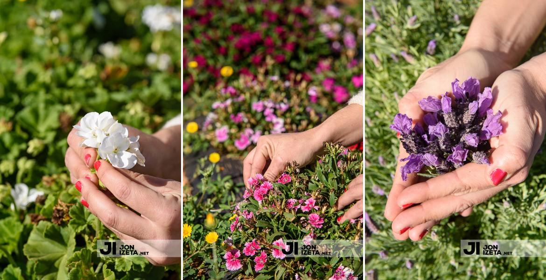 Ibiza Púnica | Delicatessen floral